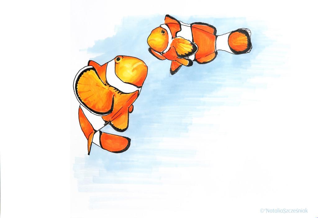 """dzień 4 - rypcie, """"Gdzie jest Nemo?"""""""