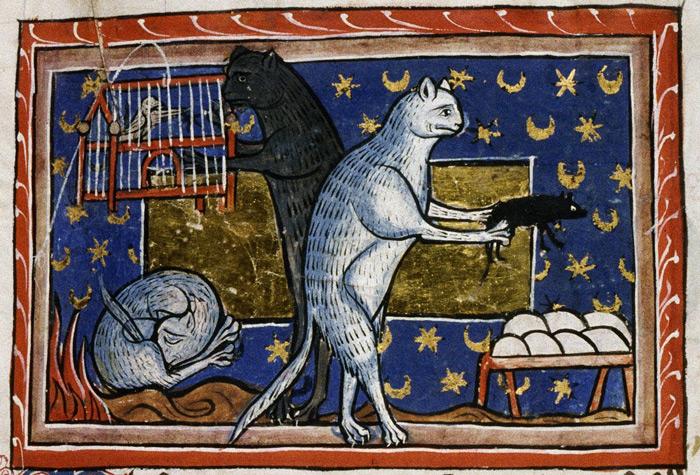 kot - bestiariusz